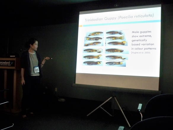 My labmate, Anna Li, giving her presentation on the 'Negative frequency dependent selection in Trinidadian guppies: the rare male effect, aggression and dispersal'